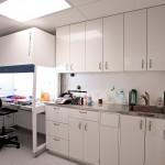 Hotte ventilée, laboratoire de catégorie 2